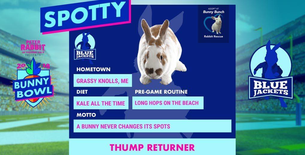 Bunny player profile blue team