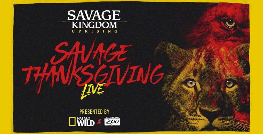 Savage Thanksgiving logo and live stream teaser with lions