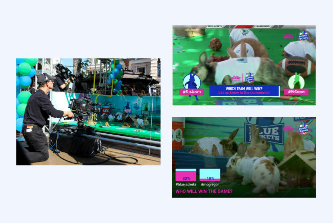 behind the scenes, on air poll and action bunny shot